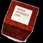 mediaepiteszeti